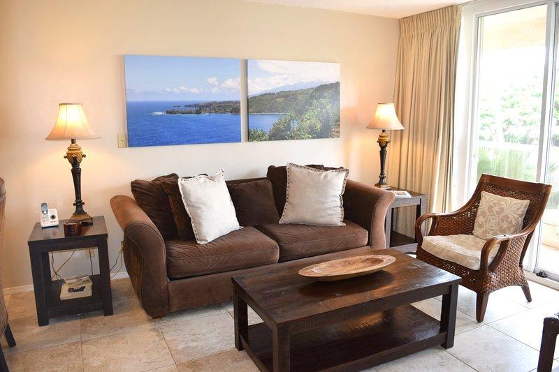 Comfortable sofa and living area