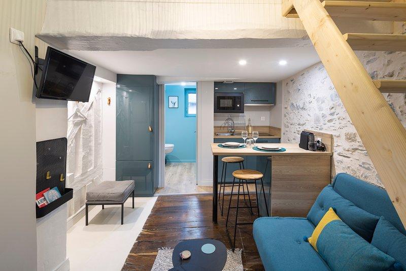 Le Blue - Studio mezzanine, location de vacances à Rennes