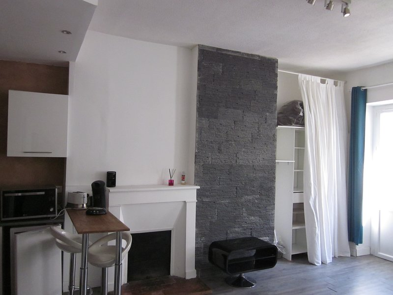 JOLI STUDIO ENTIÈREMENT RÉNOVÉ PROCHE DU CENTRE, holiday rental in Pau