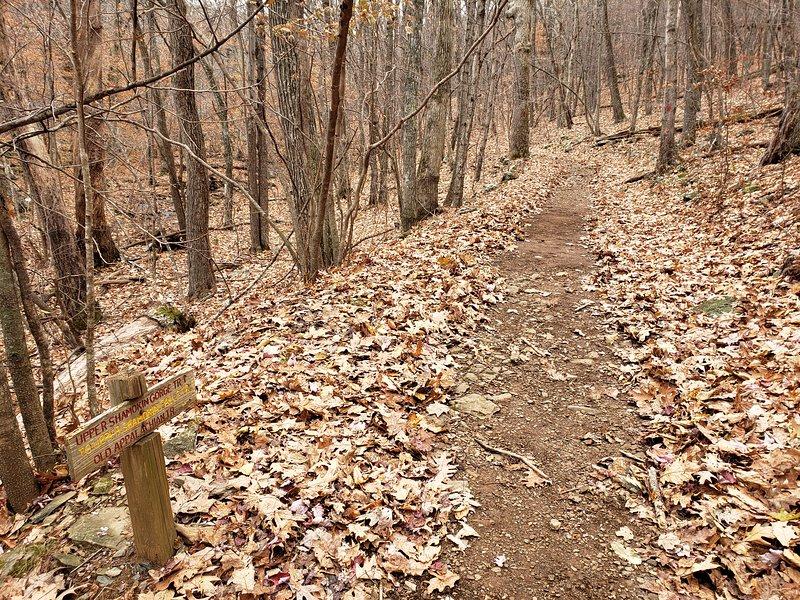 Gli Appalachian e Shamokin Water Fall Trails si collegano attraverso il cortile!