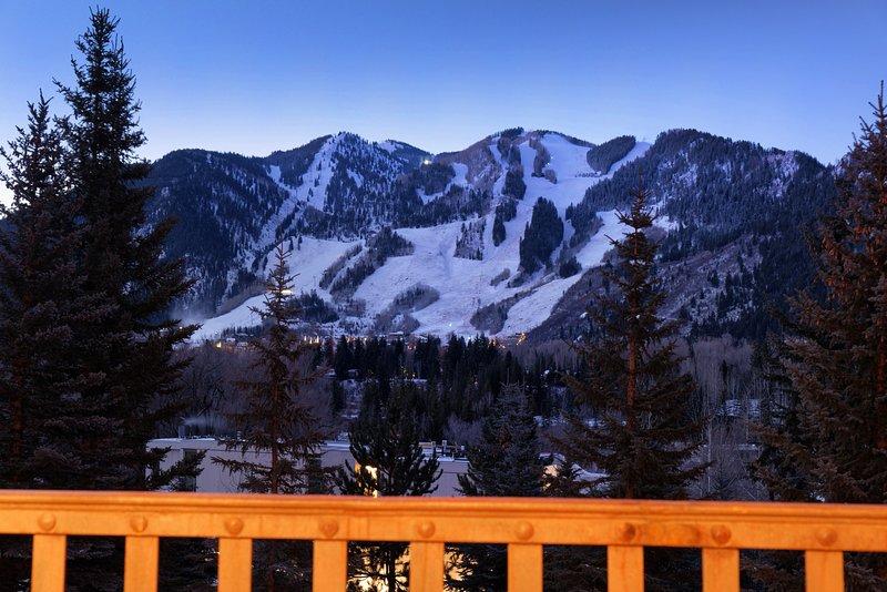 Spettacolare Aspen Mountain Views