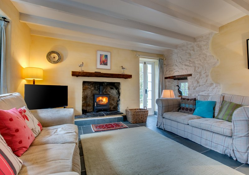 The Corn Mill, holiday rental in Abereiddy