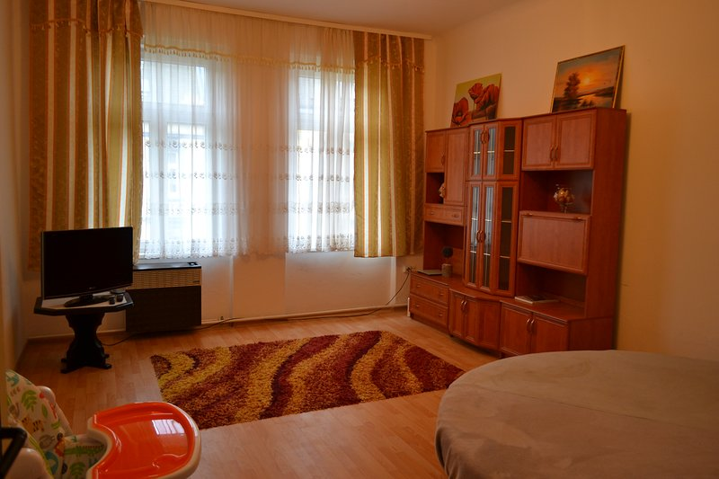 Apartment Maestro, holiday rental in Teplice