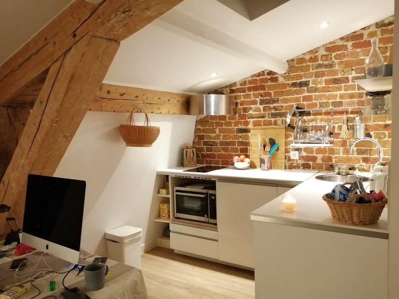 Cosy renovated studio in the heart of Paris, vacation rental in Paris