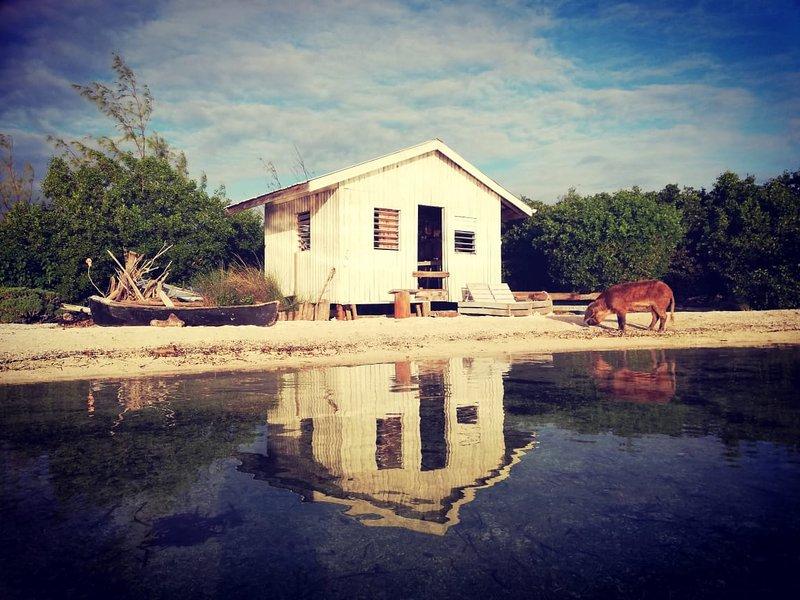 Cozy Cabin on a Private Island, aluguéis de temporada em Sittee Point