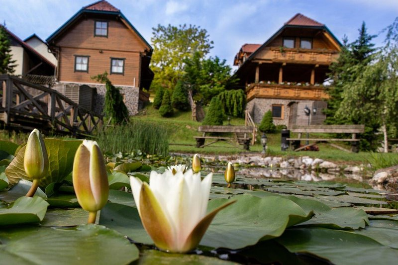 Apartments and wellness center Korošec - orange apartment, vacation rental in Gornji Grad