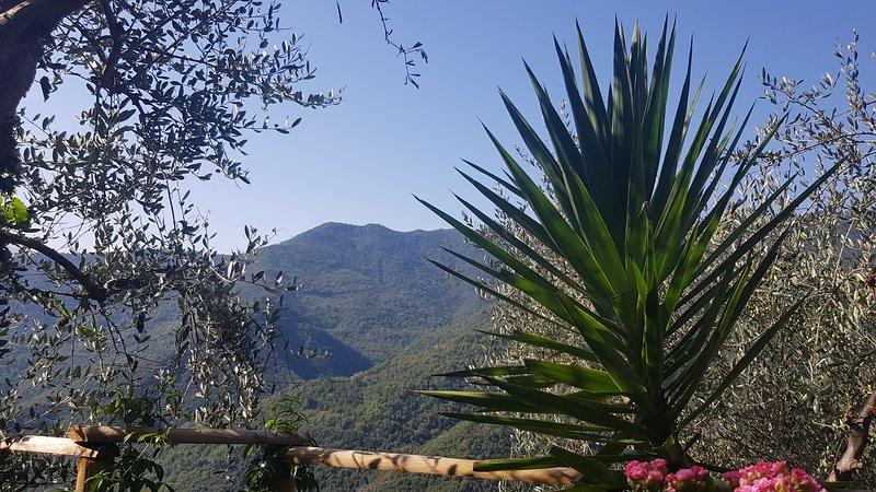 CA DE ISIDORU, vacation rental in Agaggio Inferiore