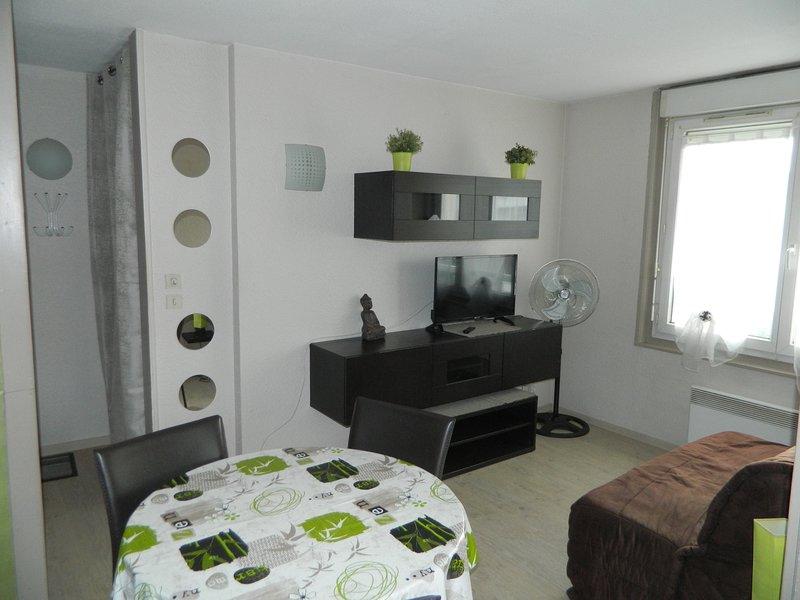 ANNECY PONT NEUF T1BIS CHOCO/PISTACHE, holiday rental in Cran-Gevrier