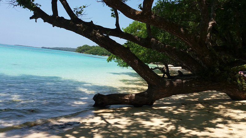 Sands Beach Cottage, holiday rental in Luganville