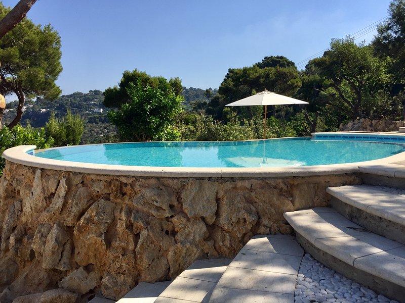 Penthouse Donna Carmela Capri Private Villas, location de vacances à Anacapri