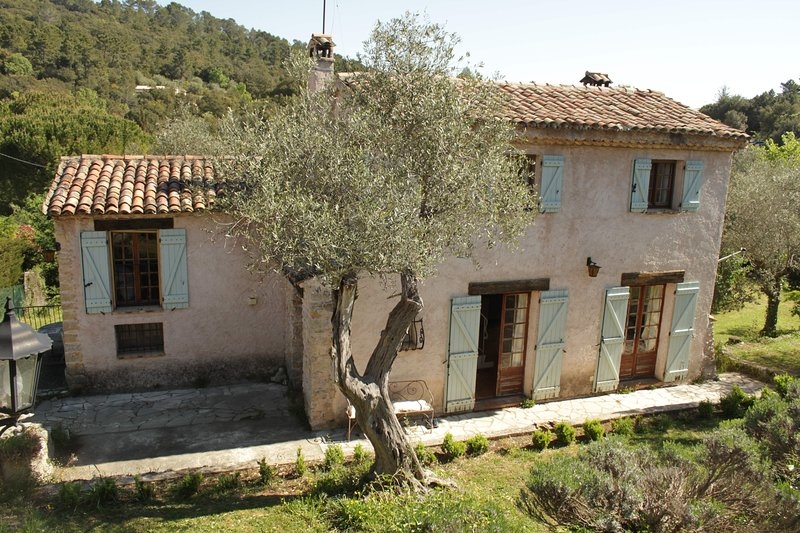 Beautiful and rare traditional provencal villa in ancient olive grove, vacation rental in Montauroux