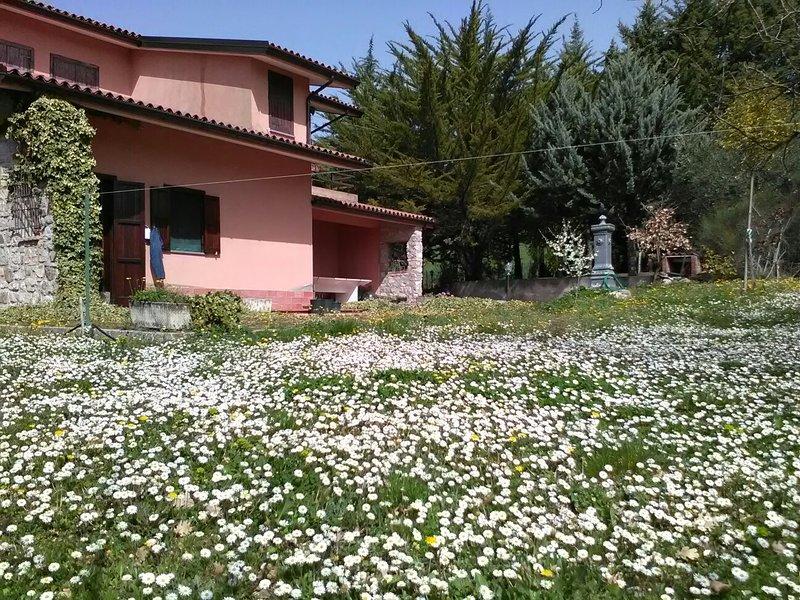 Graziosa villa sulle verdeggianti colline del Melandro -Picerno (PZ) Basilicata, vacation rental in Lagopesole