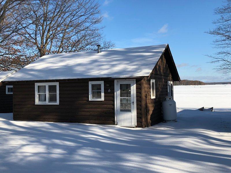 Lakeside Cabins - Cabin #6, holiday rental in Carp Lake