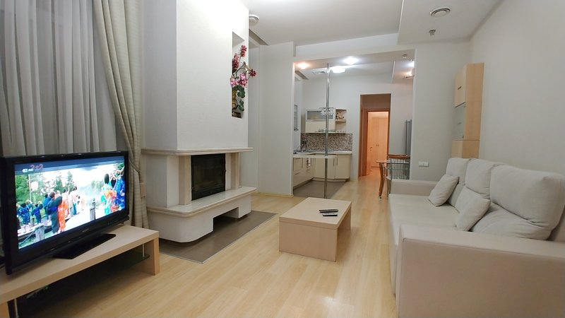 Two Bedrooms Lux 6 Zankovetskoi str Near Kreschatyk, vacation rental in Kyiv (Kiev)