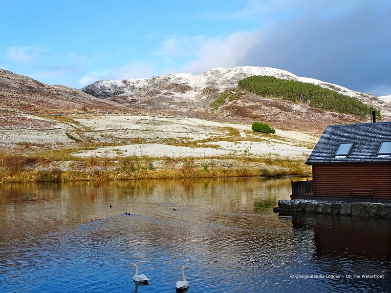 Glengoulandie Lodges - On The Waterfront, holiday rental in Aberfeldy