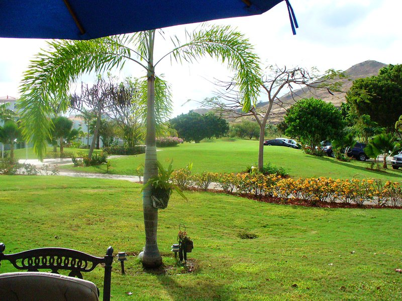 Beautiful and peaceful one bedroom apartment, vacation rental in Cayey