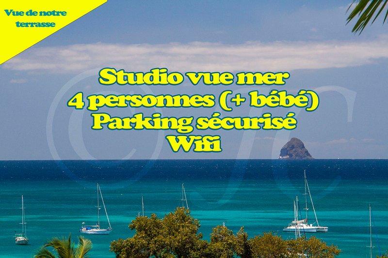 Studio vue mer Hauts de Caritan, holiday rental in Sainte-Anne