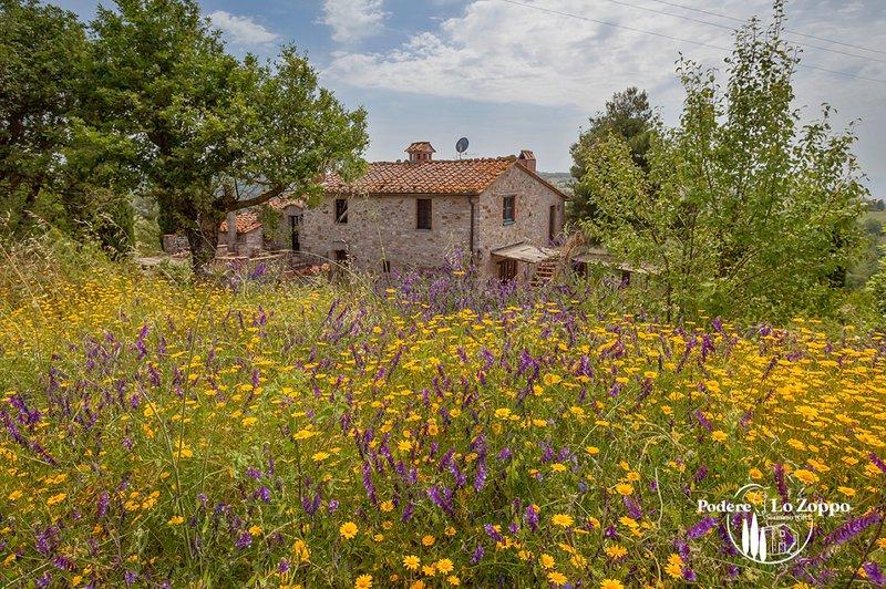 Podere Lo Zoppo - Piscina e Cavalli in ambiente familiare, alquiler vacacional en Bivio Montorgiali