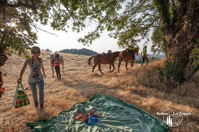 Pic-nic con i nostri cavalli nei dintroni del podere