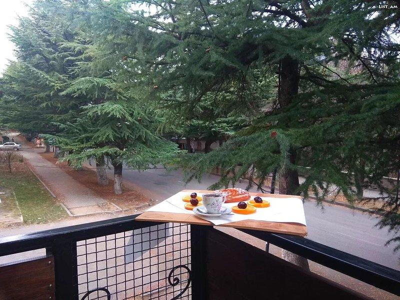 Balcon Guest House, location de vacances à Tsakhkadzor