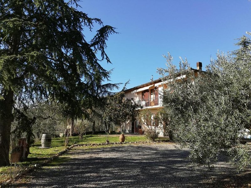 Family room pool view, alquiler vacacional en Lecchi in Chianti