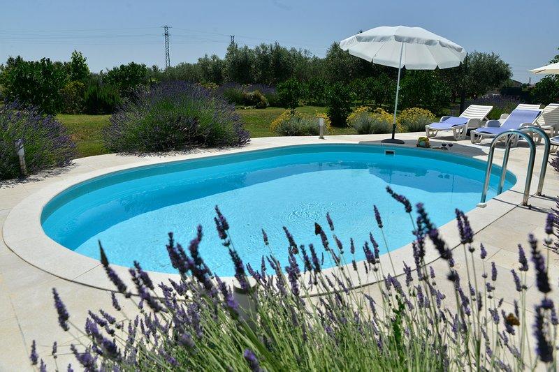 Villa Bozac with swimming pool, holiday rental in Vodnjan