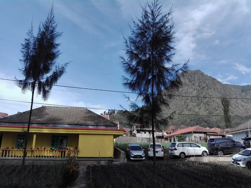 Homestay Wonotoro Asri 4 Gunung Bromo, vacation rental in Tosari