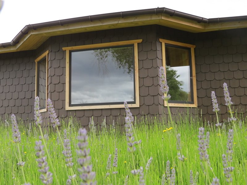 Cozy swiss style bungalow near Puerto Octay, location de vacances à Puerto Octay