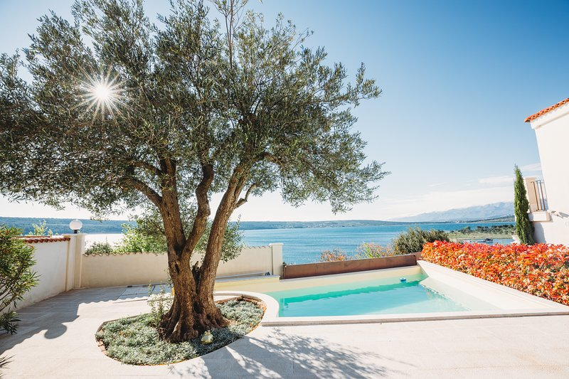 Villa Mavie - a dream villa directly on the sea, holiday rental in Gornji Karin