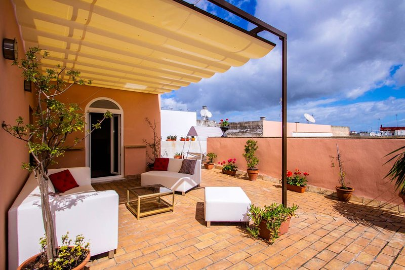 Beautiful apt with terrace & Wifi, holiday rental in Jerez De La Frontera