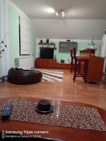 Apartman Sara Pale, alquiler vacacional en Pale