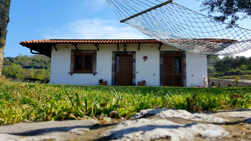 VILLA SUN and RELAX, relaxing location with sea view, Ferienwohnung in Massa Lubrense