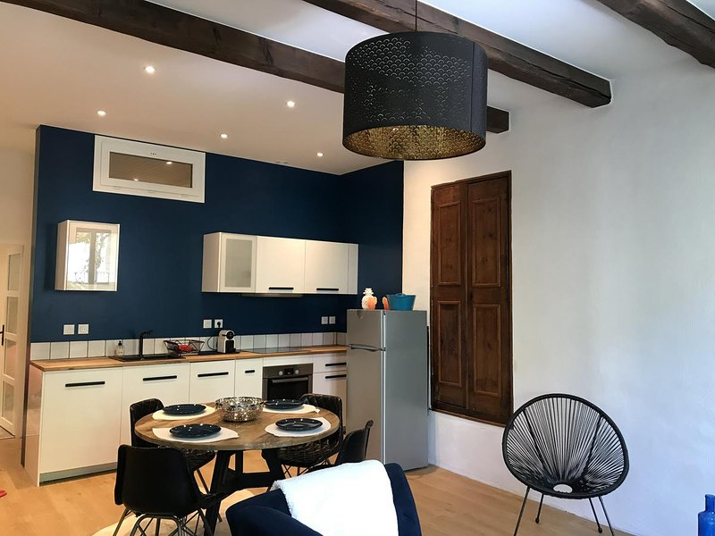 Amazing apartment in Forcalquier, holiday rental in Niozelles