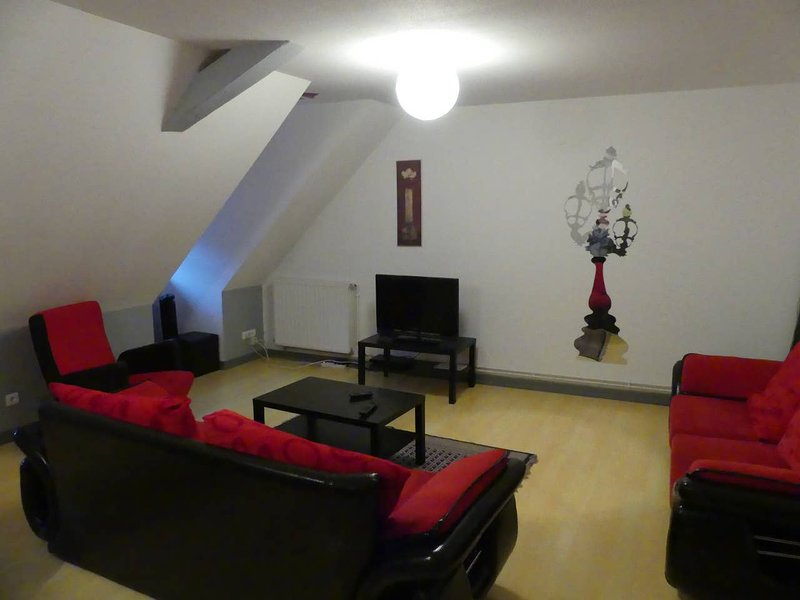 Big apt for 10 holidaymakers & Wifi, holiday rental in Aubure