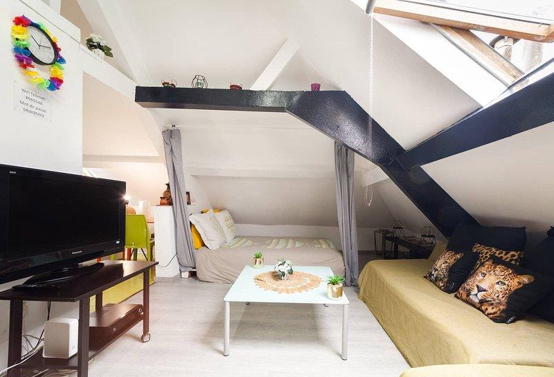 Nice studio in Bruxelles & Wifi, holiday rental in Anderlecht