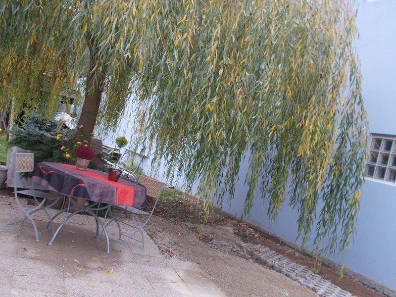 Beautiful studio with garden & Wifi, holiday rental in Benfeld