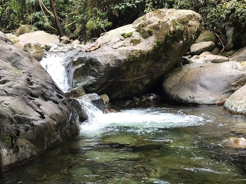 Reserva Natural Bachue, alquiler de vacaciones en Departamento de Valle del Cauca