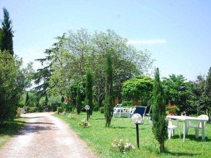 Agriturismo a Vinci ID 3660, location de vacances à Vinci