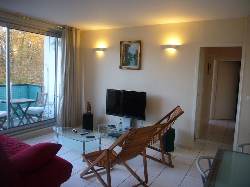 Amazing apartment with balcony, vacation rental in Saint-Germain-en-Laye