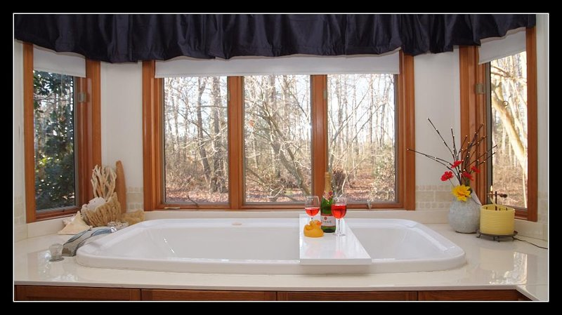 Romantic Private Apartment W Jacuzzi Pool 19 Miles To Beachespets Updated 2021 Tripadvisor Rehoboth Beach Vacation Rental