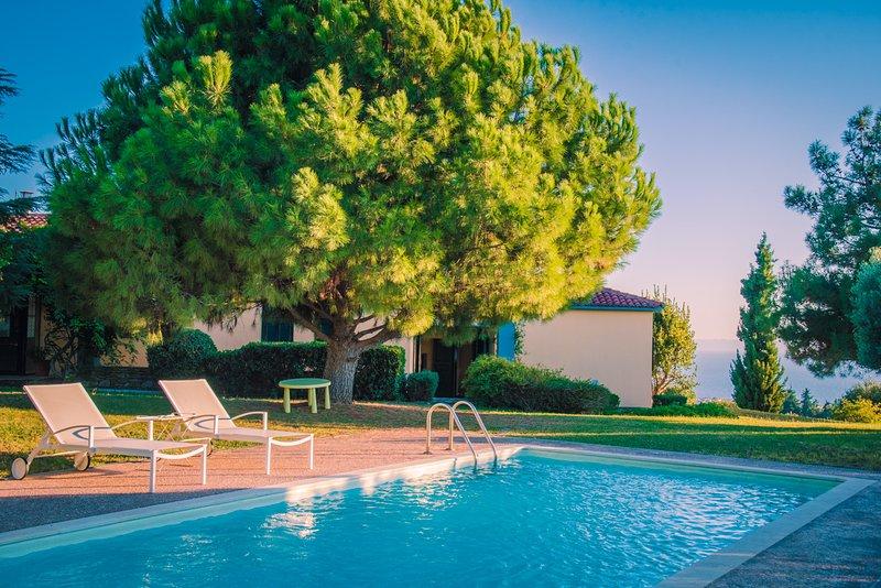 Quintessence Villa Pool, vacation rental in Ormos Panagias