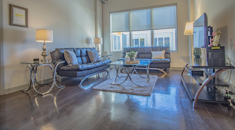 Brand New 2 BR furnished apartment in Atlanta Midtown - Great location, holiday rental in Atlanta