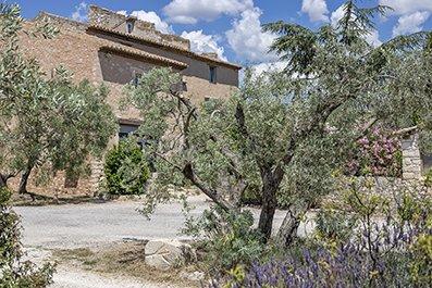La Provence : très beau deux-pièces dans vieux mas Provençal, holiday rental in Bouches-du-Rhone