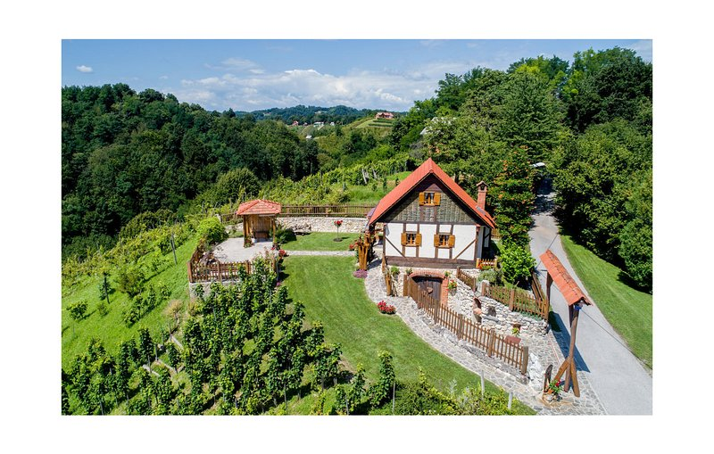 Amazing home in Donja Voca with WiFi and 1 Bedrooms (CCC058), location de vacances à Ormoz