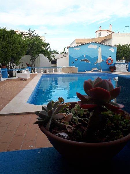 Casa Bananeiras, holiday rental in Faro District
