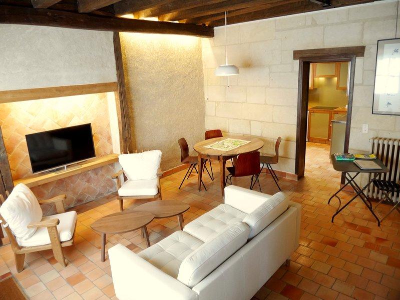 Le Plessis-Lepage - Le Gite - Azay-le-Rideau - Loire valley -, holiday rental in Azay-le-Rideau