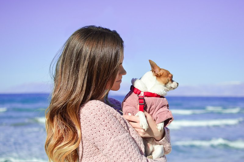 SMALL DOGS WELCOME. Ask about our pet policies and local pet friendly attractions!