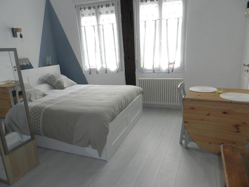 L'IMPREVU, vacation rental in Villemeux-sur-Eure
