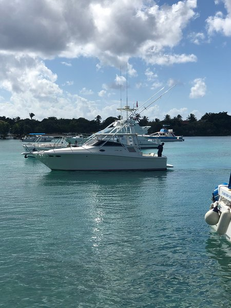 PRIVATE YATCH IN LA ROMANA ,TRIP TO ISLA SAONA, PALMILLA, CATALINA, FISHING., Ferienwohnung in La Romana Province