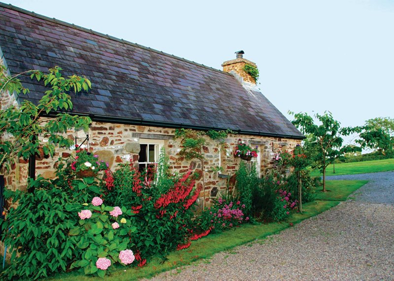 Primrose Cottage - HW7100, location de vacances à Amroth